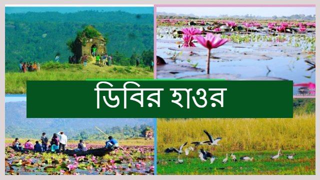 Dibir-Hawor-jaintapur-Feature-image
