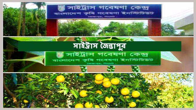 Citrus-Research-Center-Jaintapur-gate-view
