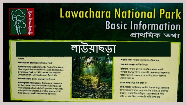lawachara-feaure-লাউয়াছড়া