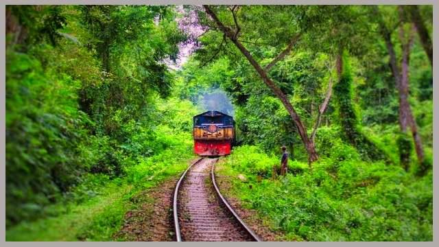 train-road-লাউয়াছড়া